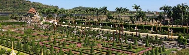 großes areal mit vielen palmen
