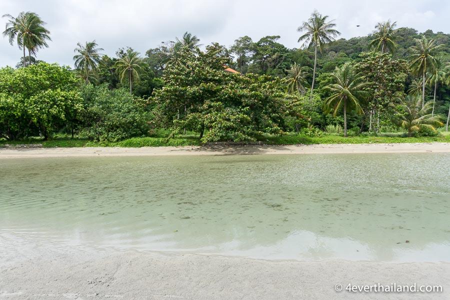 Strand mit klarem Wasser und Palmen