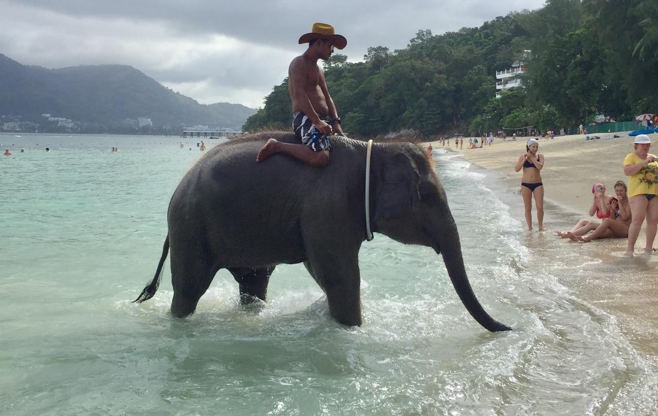 elefantenreiten-in-thailand