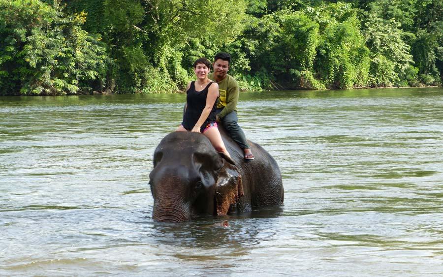 elephant-camp-kanchanaburi